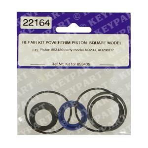22164 - Ram Seal Kit for 853439 Rams