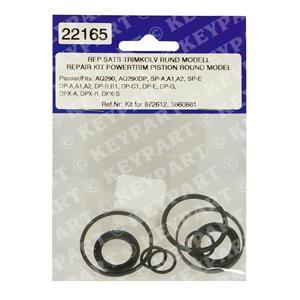 22165 - Ram Seal Kit for 872612/3860881 Rams