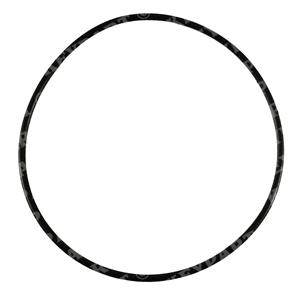 3581618 - Seawater Pump Cover O-ring - Genuine