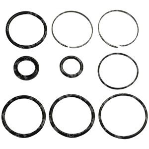 3854247-R - SX Drive Trim Ram Seal Kit - Replacement