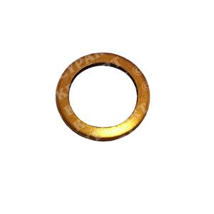 969011-R - Pipe Washer - Replacement